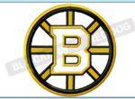 boston-bruins-applique-design-blucatreddog.is