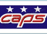 washington-caps-embroidery-logo-blucatreddog.is