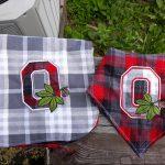Ohio-State-Buckeye-Applique-design-stitched-by-Autumn-Fogle